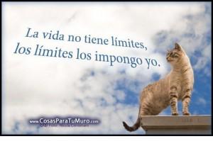la vida tiene límites
