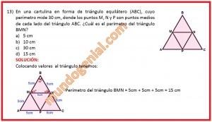 en una cartulina en forma de triángulo equilátero ABC,