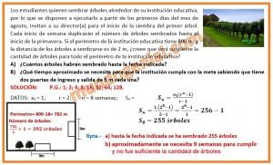 Los estudiantes quieren sembrar árboles alrededor de su institución educativa, por lo que se dispone a ejecutarlo...