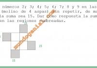 Ubicar los números 2-3-4-5-6-7-8-9 en las casillas de la figura....