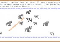 Un ganadero quiere separar estas 11 vacas construyendo 11 corrales ...