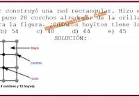Un pescador construyó una red rectangular. Hizo exactamente 32 nudos ...