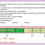 EL BRAMANTE - Qué longitud tenía el cordel al principio .....