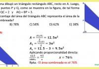 maria elena dibujó un triángulo rectángulo ABC,........