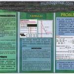 TRIPTICO 4 SISTEMA DE ECUACIONES - PROBLEMAS