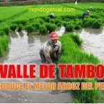 valle de tambo