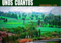 la agricultura alimenta la mina mata