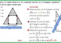 en la figura, la región blanca es un cuadrado inscrito en el triángulo equilatero.......